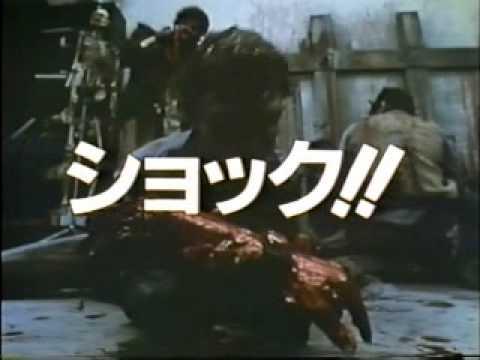 DAY OF THE DEAD Japanese Trailer - Import Laserdisc George A. Romero Tom Savini