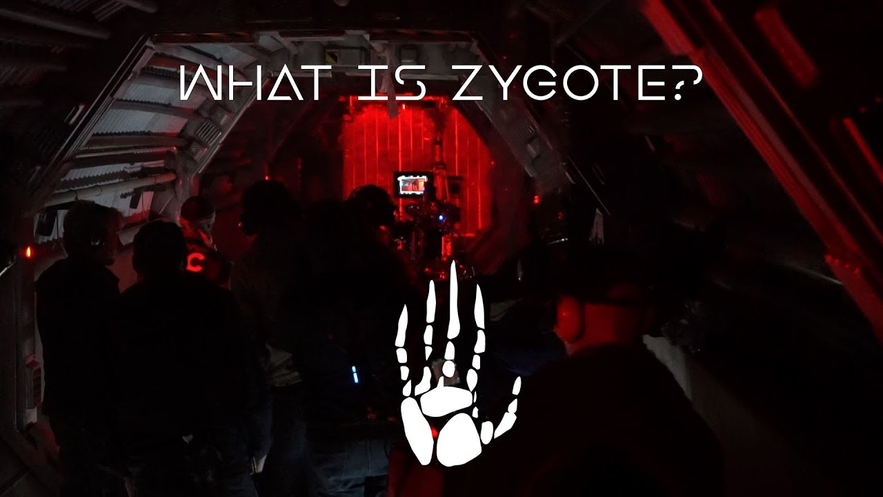 Oats Studios - What is Zygote?