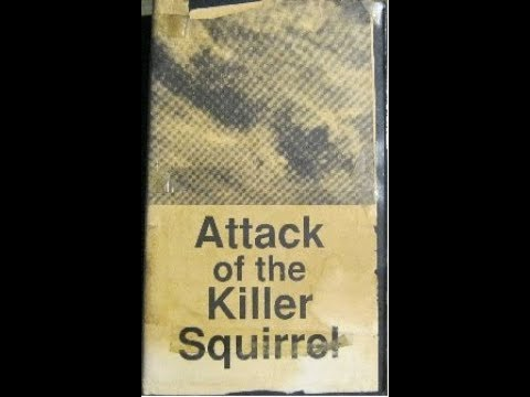Attack of the Killer Squirrel