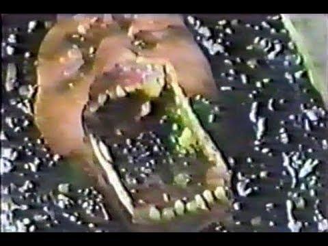 Conton (Jûshin densetsu) 1987 vhsrip sub ita/eng