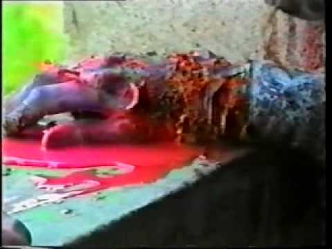 SS. SEGRETO SANGUE(ITALIAN ZOMBIE MOVIE 1992)[NO BUDGET BUT KILLER!].mkv