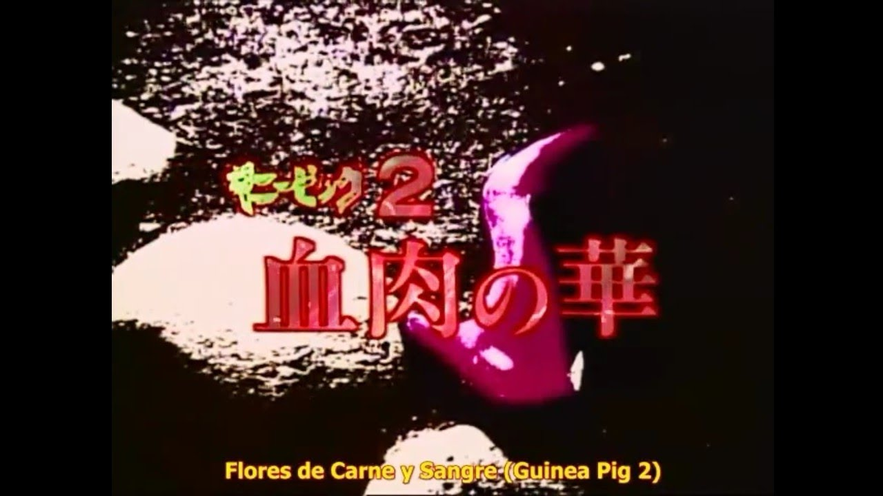 Guinea Pig 2: Flower of flesh and blood (1985) | Sub. español | Película completa en HD |Sinopsis ⬇