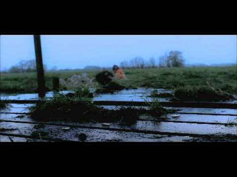 WORST CASE SCENARIO Trailer 2 Blue