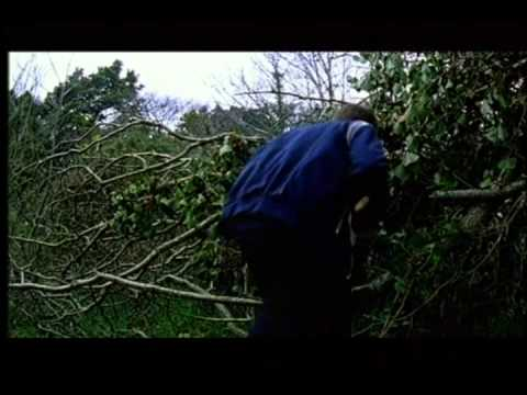 The Braineater - Short Film By Conor McMahon
